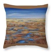 Salt Marsh In Summer Throw Pillow
