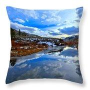 Salt River Reflections Throw Pillow