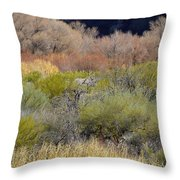 Salt River Spring Throw Pillow