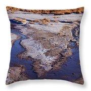 Salt Stream Confluence Throw Pillow