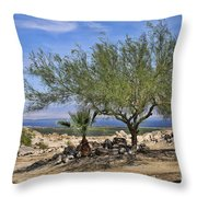 Salton Sea Oasis Throw Pillow