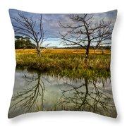 Salty Marsh At Jekyll Island Throw Pillow