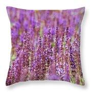 Salvia Abstract Throw Pillow
