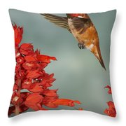 Salvia Treat Throw Pillow