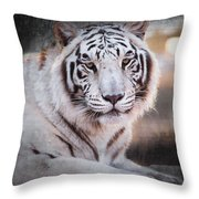 Samara 3 Throw Pillow