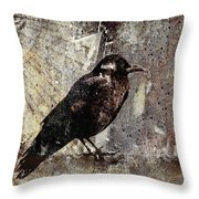 Same Crow Different Day Throw Pillow