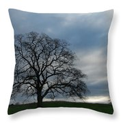 Same Tree Many Skies 10 Throw Pillow