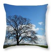 Same Tree Many Skies 11 Throw Pillow