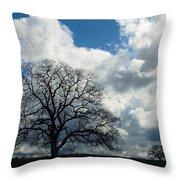 Same Tree Many Skies 13 Throw Pillow