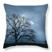 Same Tree Many Skies 14 Throw Pillow