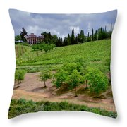 San Casciano In Val Di Pesa- Italy Throw Pillow