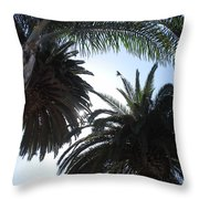 San Diego Breeze Throw Pillow