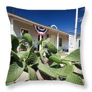 San Diego Union - Old Town Throw Pillow