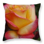 San Francisco Rose Garden Rose Throw Pillow