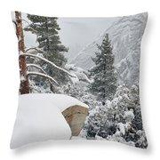 San Jacinto Winter Wilderness Throw Pillow
