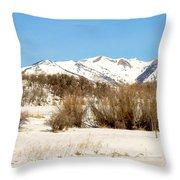 San Juan Mountains No. 1 Throw Pillow