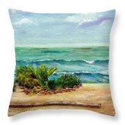 San Onofre Beach Throw Pillow
