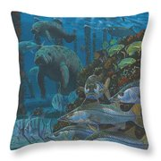 Sanctuary In0021 Throw Pillow
