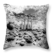 Sanctuary Of Gods And Goddesses Throw Pillow