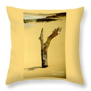 Sand And Wood Throw Pillow