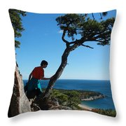 Sand Beach From The Beehive Throw Pillow