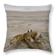 Sand Crab Throw Pillow by Nelson Watkins
