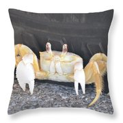 Sand Crab Up Against The Sidewall Throw Pillow