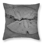Sand Dollar And Surf Bubbles Throw Pillow