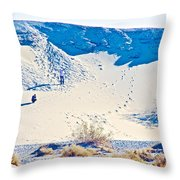 Sand Dune Bordering Salt Creek Trail In Death Valley National Park-california Throw Pillow