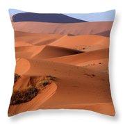 Sand Dune Sculpture  Throw Pillow