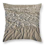 Sand Dunes Like Fine Cloth Throw Pillow