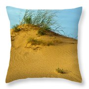 Sand Hill Throw Pillow