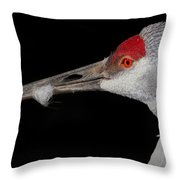 Sand Hill Crane Throw Pillow