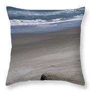 Sand Mogul On Florida Beach Throw Pillow