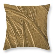 Sand Painting2 Throw Pillow