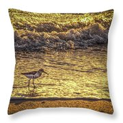 Sand Piper Throw Pillow by Marvin Spates