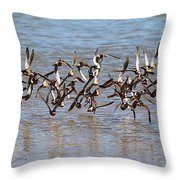 Sand Pipers Arrive At The Grp Throw Pillow