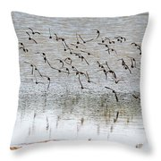 Sand Pipers In Flight Throw Pillow