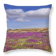 Sand Verbena On The Imperial Sand Dunes Throw Pillow