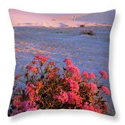 Sand Verbenas At Sunset White Sands National Monument Throw Pillow