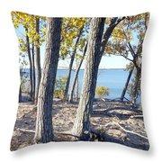 Sandbanks Provincial Park Throw Pillow