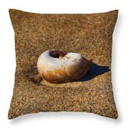 Sanded Throw Pillow