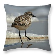 Sanderling Gulf Of Mexico Throw Pillow