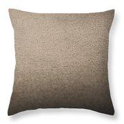 Sanderling On Vero Beach Throw Pillow