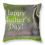 Sandhill Chick Mother's Day Card Throw Pillow