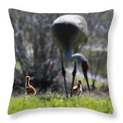 Sandhill Chicks Under Foot Throw Pillow