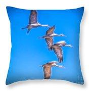 Sandhill Crane 10 Throw Pillow
