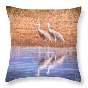 Sandhill Crane 11 Throw Pillow
