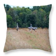 Sandhill Crane 2 Throw Pillow