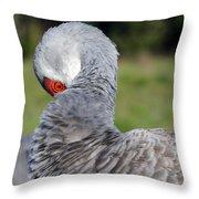 Sandhill Crane Throw Pillow by April Wietrecki Green